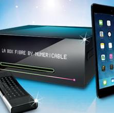Numericable offre un iPad mini à 1€ jusqu'au 5 février!